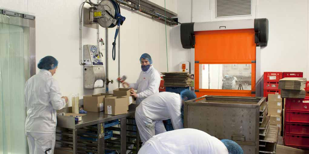 Automatic rapid doors for the food processing industry